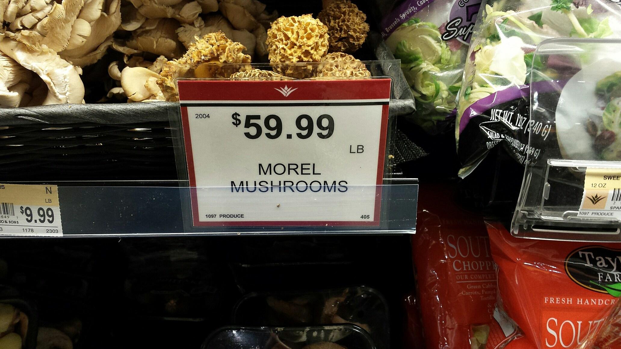 Morels for Sale